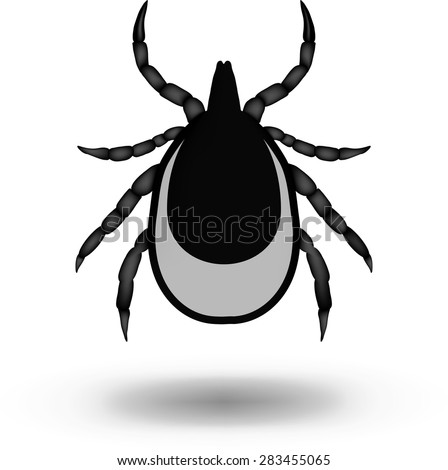 vector image of a tick