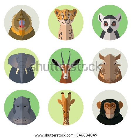 Vector  image of african animal round flat icons - stock vector