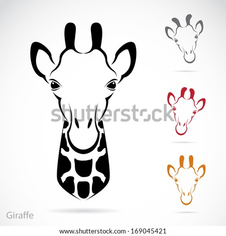 Giraffe Face Stock Images Royalty Free Images Amp Vectors