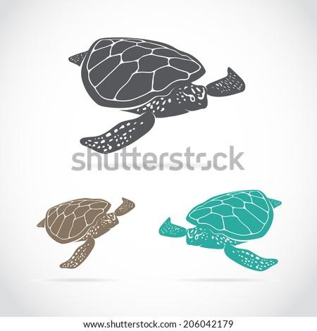 Sea Turtle Free Vector Art  2600 Free Downloads  Vecteezy