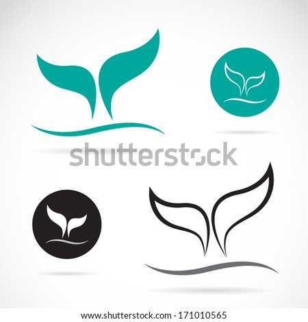 Vector image of an whale tails on white background - stock vector