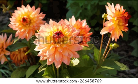 vector image of orange dahlia flowers