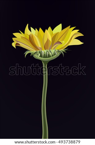 Vector image of sunflower