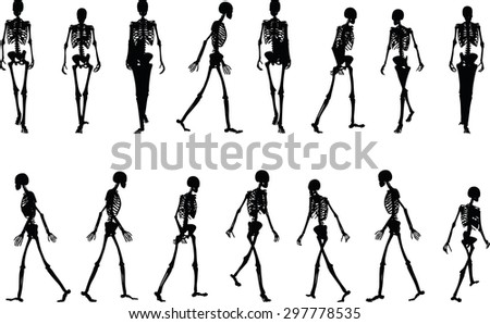 vector image skeleton silhouette walk pose stock vector 297778562, Skeleton