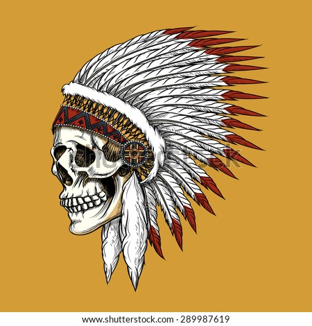Vector indian skull. Feather and tribal, bone and skeleton, western cowboy - stock vector