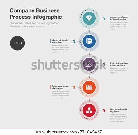 vector infographic company business process template stock vector