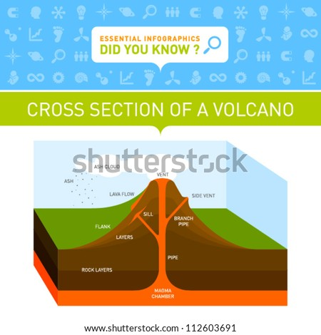 Vector Infographic - Cross Section of Volcano - stock vector