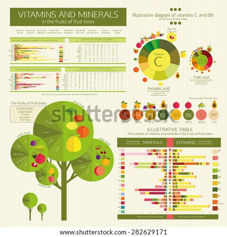 vector Infographic: The content of vitamins and minerals in the fruits of fruit trees. Comparative analysis. Visual diagrams and data tables. Basics of healthy nutrition.