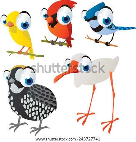 vector isolated cartoon cute animals set: birds: canary, cardinal, jay, quail, ibis - stock vector