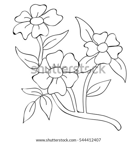 Vector Isolated Coloring Book Flowers Rose Stock Vector 544412407 ...