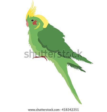 vector, isolated parrot green - stock vector