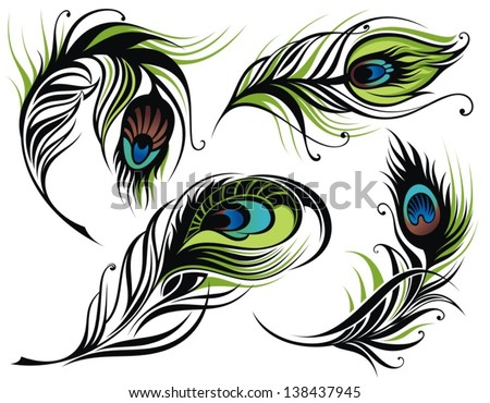 Vector isolated peacock feathers - stock vector