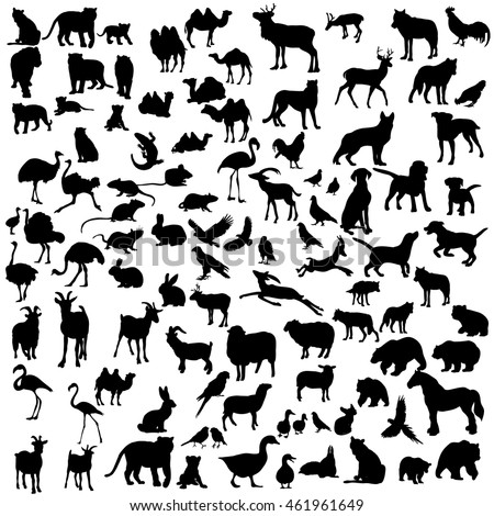 vector isolated silhouette of a large set of animals
