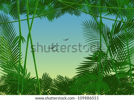 vector jungle forest - stock vector