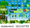 Vector Jungle Rainforest Travel infographics elements with Frog, Toucan, butterflies, quetzal, humming-birds, Ara, anaconda, saw and girl - stock vector