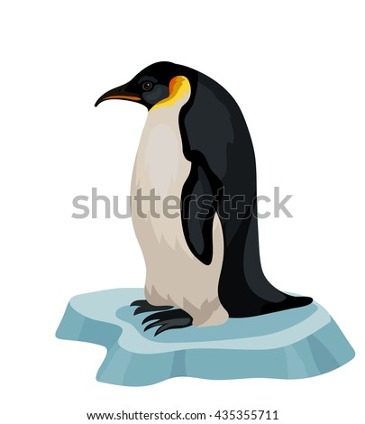 Vector king penguin