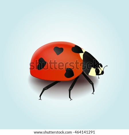 Vector ladybug with heart