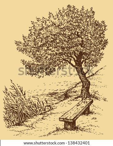 Vector landscape. Old bench near the tree on the bank of the lake - stock vector