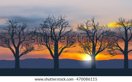 Vector landscape with silhouettes of leafless trees in the morning