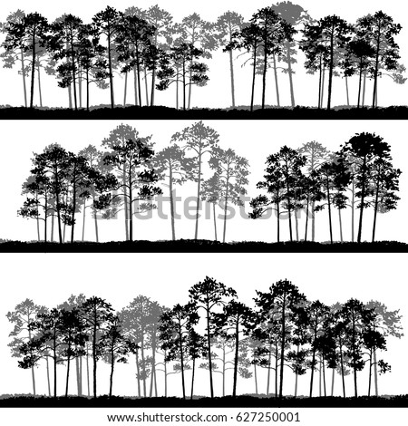 vector landscapes with pine trees and grass, abstract nature background, forest template, hand drawn illustration