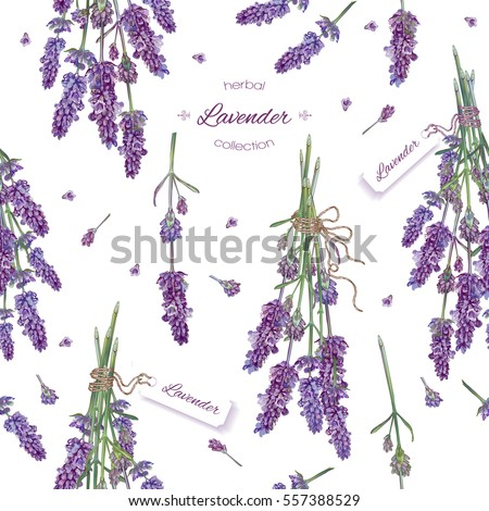 Vector lavender flower seamless pattern. Background design for natural cosmetics, beauty store, health care products, perfume, essential oil. Can be used as wedding background. Best for wrapping paper