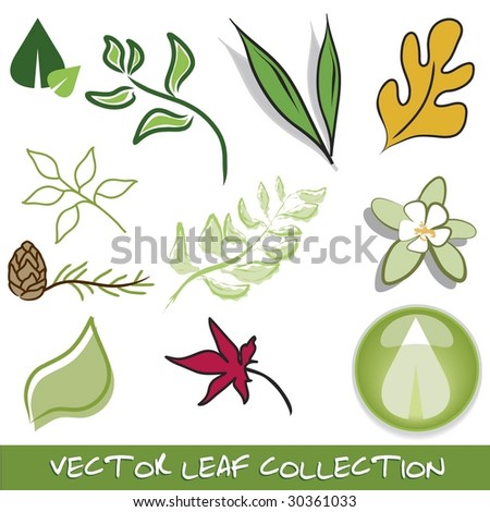 Vector leaf collection - stock vector