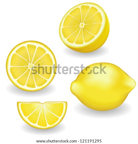 vector - Lemons, four views. Fresh, natural lemons: whole, half, slice, wedge. Graphic illustrations isolated on white background. Includes gradient mesh. - stock vector