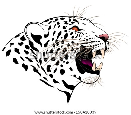 Vector leopard - stock vector
