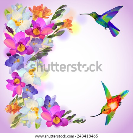 Vector lilac greeting background with flitting humming bird with and beautiful freesia flowers - stock vector