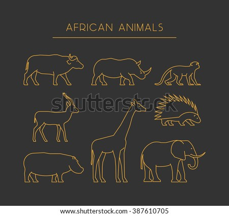 Vector line set of african animals. Gold linear silhouettes african animals isolated on a black background. Outline icons african animals. - stock vector