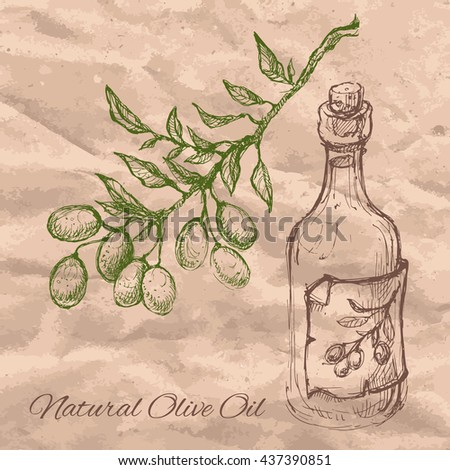 Vector linear illustration of the olive branch, glass bottle of the olive oil and text Natural Olive Oil on the textured old paper background. Vector hand drawn sketch for shop,menu, cafe, restaurant. - stock vector