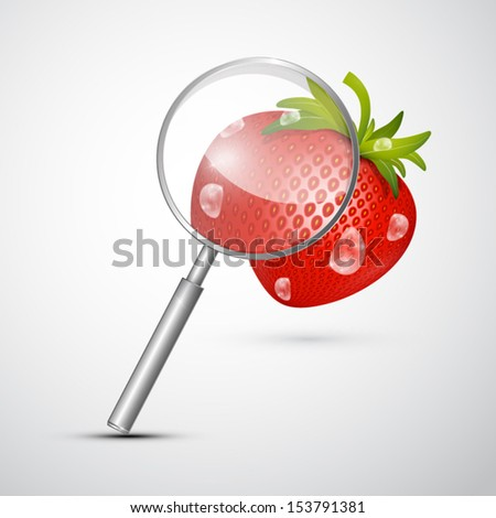 Vector Magnifying Glass an Strawberry Isolated on Grey Background - stock vector