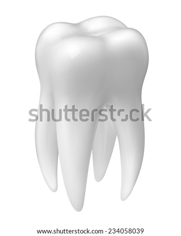 Vector molar tooth icon isolated on white - stock vector