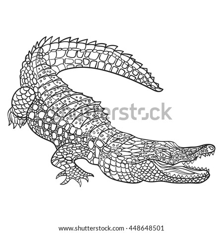 Crocodile Stock Photos Royalty Free Images Vectors Shutterstock