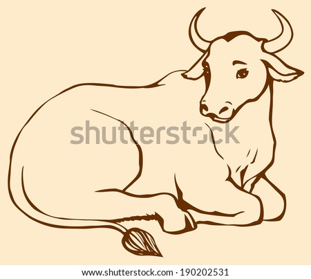 Image result for a cow in tamilnadu eating its food lying