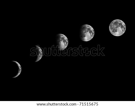 vector moon phases - stock vector