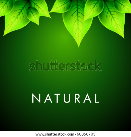 Vector Natural Design - stock vector