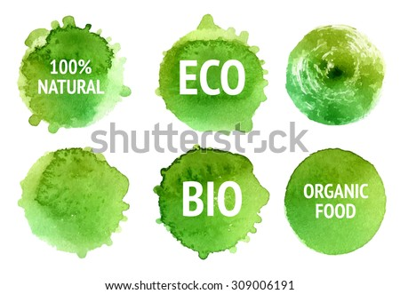 Vector natural, organic food, bio, eco labels and shapes on white background. Hand drawn watercolor stains set. - stock vector