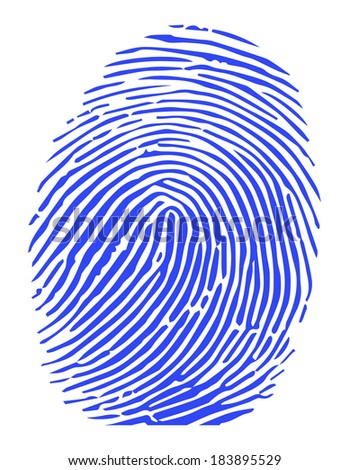Vector of a blue fingerprint - stock vector