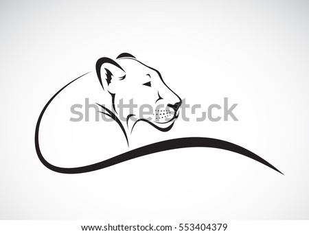Vector of a lion female on white background, Wild Animals.