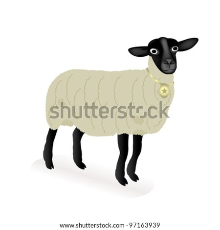 vector of a sheep over white background - stock vector