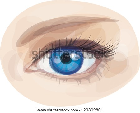 Vector of beautiful blue woman's eye. - stock vector