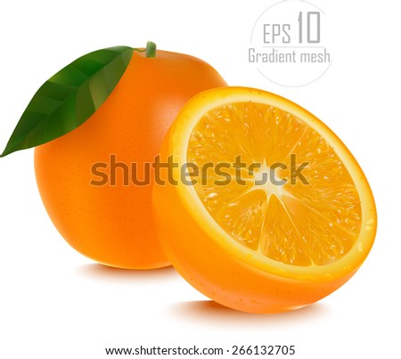 Vector of fresh ripe oranges with leaves. EPS 10 done gradient mesh on white background  - stock vector