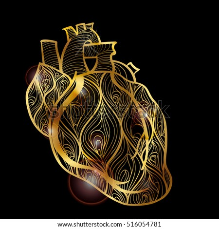 Pericardium Stock Images, Royalty-Free Images & Vectors ...