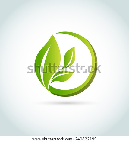 Vector of leafs nature health concept icon card - stock vector