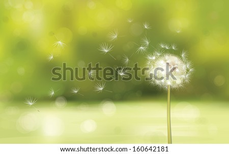 Vector of spring background with white dandelion. - stock vector