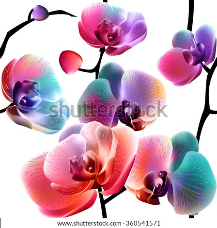 Vector orchids. Seamless pattern. EPS10. - stock vector