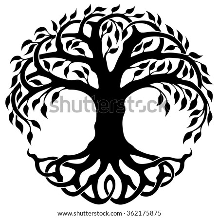 Tree Of Life Stock Images Royalty Free Images amp Vectors