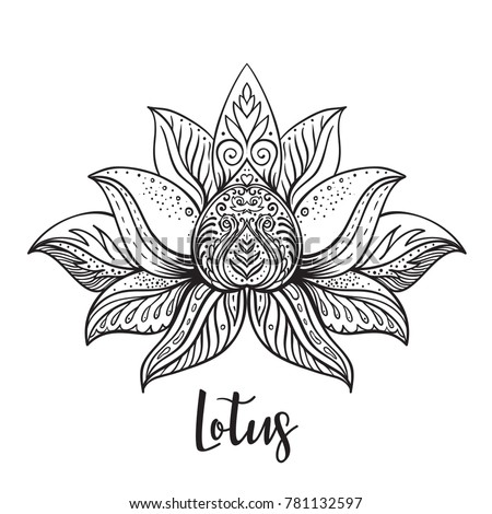 Vector ornamental lotus flower ethnic art stock vector 781132597 vector ornamental lotus flower ethnic art patterned indian paisley hand drawn illustration mightylinksfo