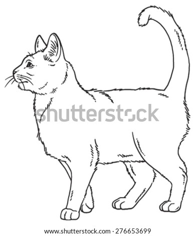 ArtHeartu0026#39;s U0026quot;Animal Sketchesu0026quot; Set On Shutterstock